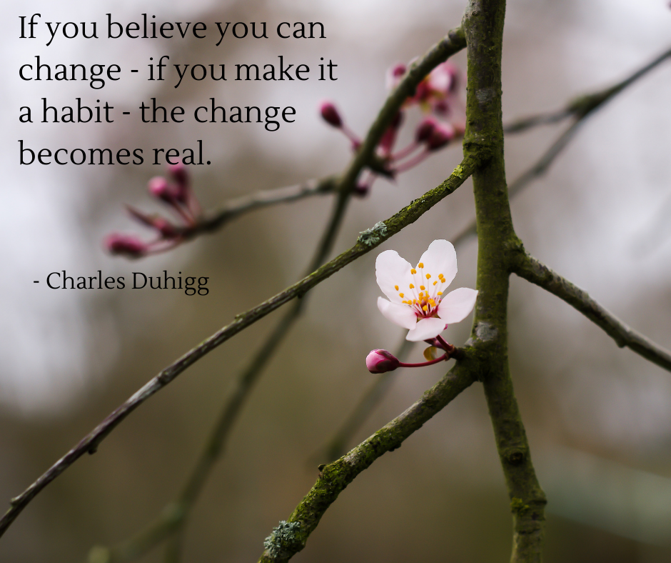 Keystone Habits quote: If you believe you can change, if you make it a habit, the change becomes real. By Charles Duhigg - Julie Leonard